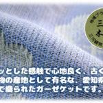 mikawa-3gauzeket